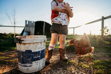 Boy And Chicken At Sunset