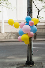 Colorful Balloons Tied Around A Lamp Post
