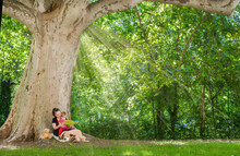 Mother Reading A Book With Her Cute Little Child Under An Old Plane Tree In The Park. Funny And Educative Outdoor Activity For Children, In Sunny Summer Day