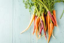 Bunch Of Freshly Picked Rainbow Carrots