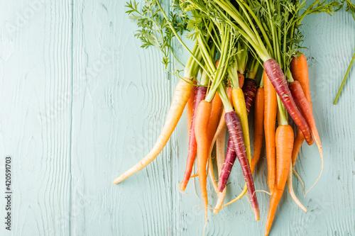 Bunch of freshly picked rainbow carrots Fototapeta