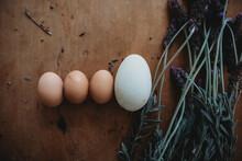 3 Chicken Eggs 1 Goose Egg