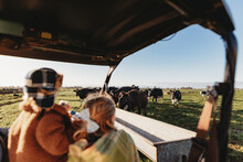 Two Girls Looking At Dairy Cows