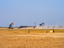 Hay Bales On The Oil Field
