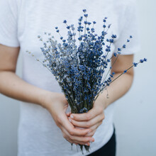 Bouquet Of Blue Lavender Flowers