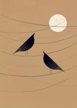 Birds Sit On Wires