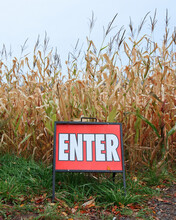 Red Enter Sign In Front Of Country Corn Field