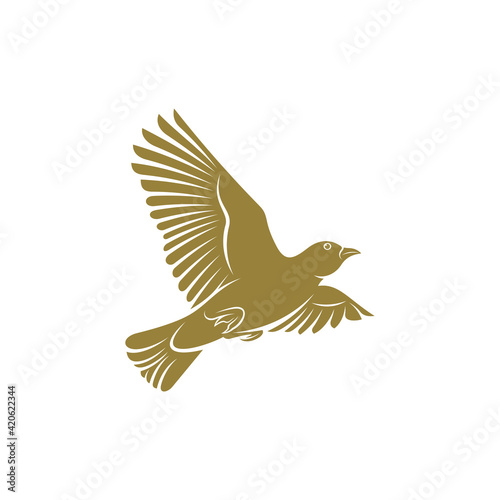Fototapeta Lark bird design vector illustration, Creative Lark bird logo design concepts te