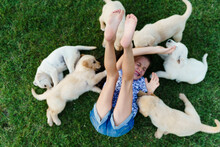 Above Shot Of Cheerful Little Girl Enjoys Playing With Her Puppies