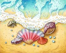 Seashells, Pearls And Sea Wave Watercolor Illustration