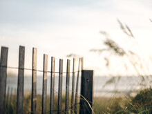 Sand Dune Fencing