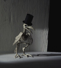 Scary Skeleton Crow Bird With Hat