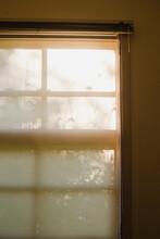Window Silhouette II