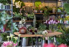 Florist Studio Tabletop Full Of Greenery