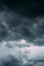 Stormy Clouds And A Bird In The Sky