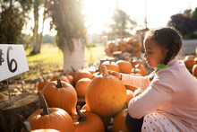 Young Girl Examines Pumpkins For Sale At Farm