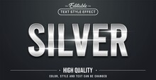 Editable Text Style Effect - Silver Theme Style.