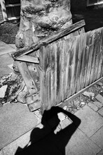 Shadow By A Broken Fence