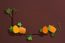 Autumn Leaves And Pumpkins Lie On Color Background,
