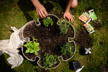 Top Down View Of Kid Planting Herbs In A Planter