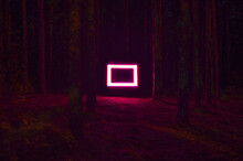 Neon Red Rectangle In The Woods