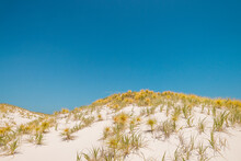 Sand Dunes By The Coast
