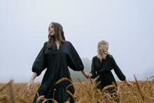 Two Beautiful Girls In Black Dresses Posing In A Wheat Field