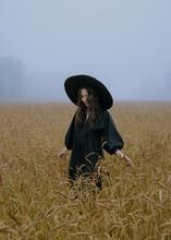 Asian Girl Posing In Wheat Field In Black Dress