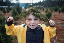 Little Boy Holding Christmas Tree Branches.
