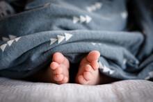 Newborn Baby Toes In Blanket