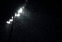 Horde Of Moths Gather Around Lights