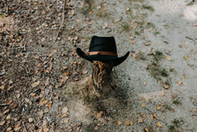 Black Cowboy Hat On A Tree Trunk Outdoors
