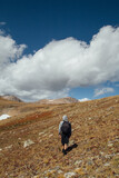 Colorado Mountain Tundra