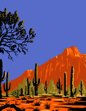 WPA Poster Art Of The Saguaro Cactus Or Carnegiea Gigantea In Ironwood Forest National Monument A Mountainous Section Of The Sonoran Desert In Arizona Done In Works Project Administration Style Style.