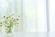 カモミールの花 カーテン