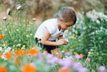 Girl Enjoy Picking Flowers In The Garden
