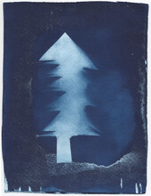Cyanotype Of A Christmas Tree