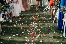 Aisle Full Of Rose Petals And Wedding Guests