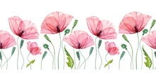 Watercolor Seamless Border With Poppy. Summer Field Flowers With Green Leaves. Floral Horizontal Line In Repeat. Realistic Botanical Illustration
