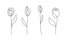 Continuous Line Drawing Set Of Flowers Black Sketch Isolated On White Background. Simple Flowers One Line Illustration Set. Minimalist Botanical Drawing. Vector EPS 10.