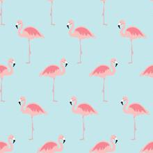 Vector Illustration Seamless Pattern With Cartoon Pink Flamingo Bird