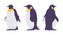 Penguin Set, Cute Large Aquatic Flightless Seabird With Yellow Neck. Water Life, Ornithology, Birdwatching Concept. Vector Flat Style Cartoon Illustration Isolated, White Background, Different Views