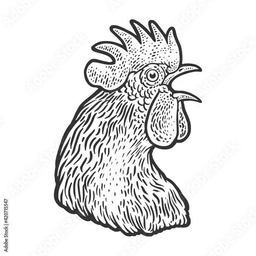 Slika na platnu crowing cock rooster head sketch engraving vector illustration