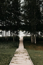 Jetty In The Woods With A Lake