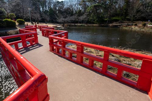 Canvas Print 岩槻城址公園の池と八つ橋 埼玉県さいたま市