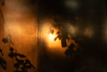 Dreamy Blurry Sunlight In The Dark Background