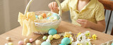banner unrecognizable little boy puts colored eggs in a wicker Easter basket. easter preparation concept