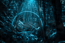 Stream In The Middle Of The Forest At Night, Glowing Blue Neon Circle And Fog