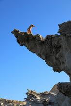 Mujer De Pie En Una Roca Saliente Acantilado Playa Almería Los Escullos Fuerte De San Felipe Mediterraneo 4M0A2709-as21