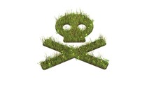 3d Rendered Grass Field Of Symbol Of Skull Crossbones Isolated On White Background